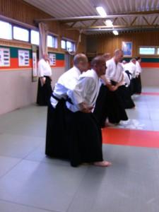 2011 SOTO-DESHI GÖTEBORG 156