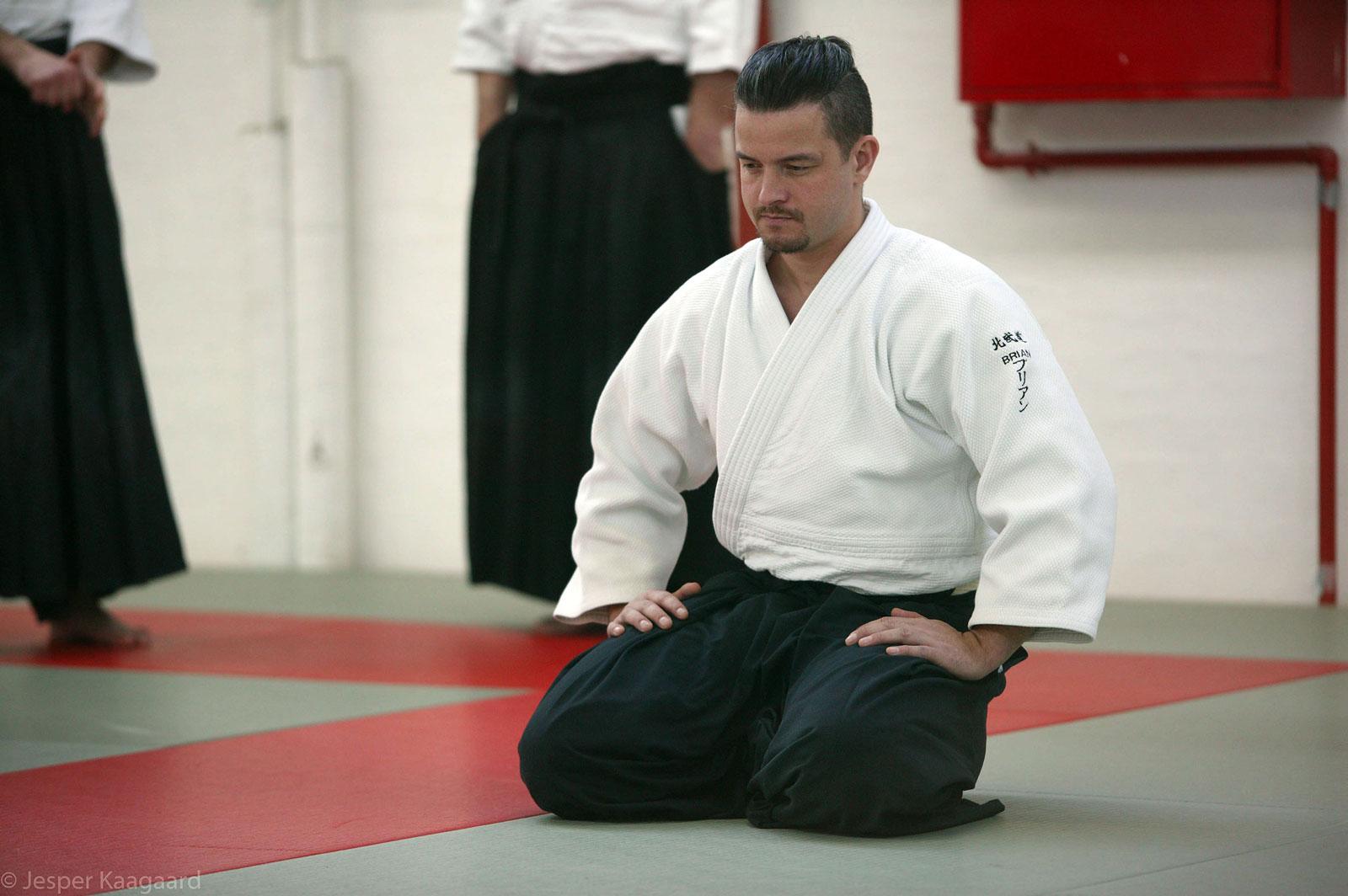 Aalborg-Aikido-seminar-2014-06