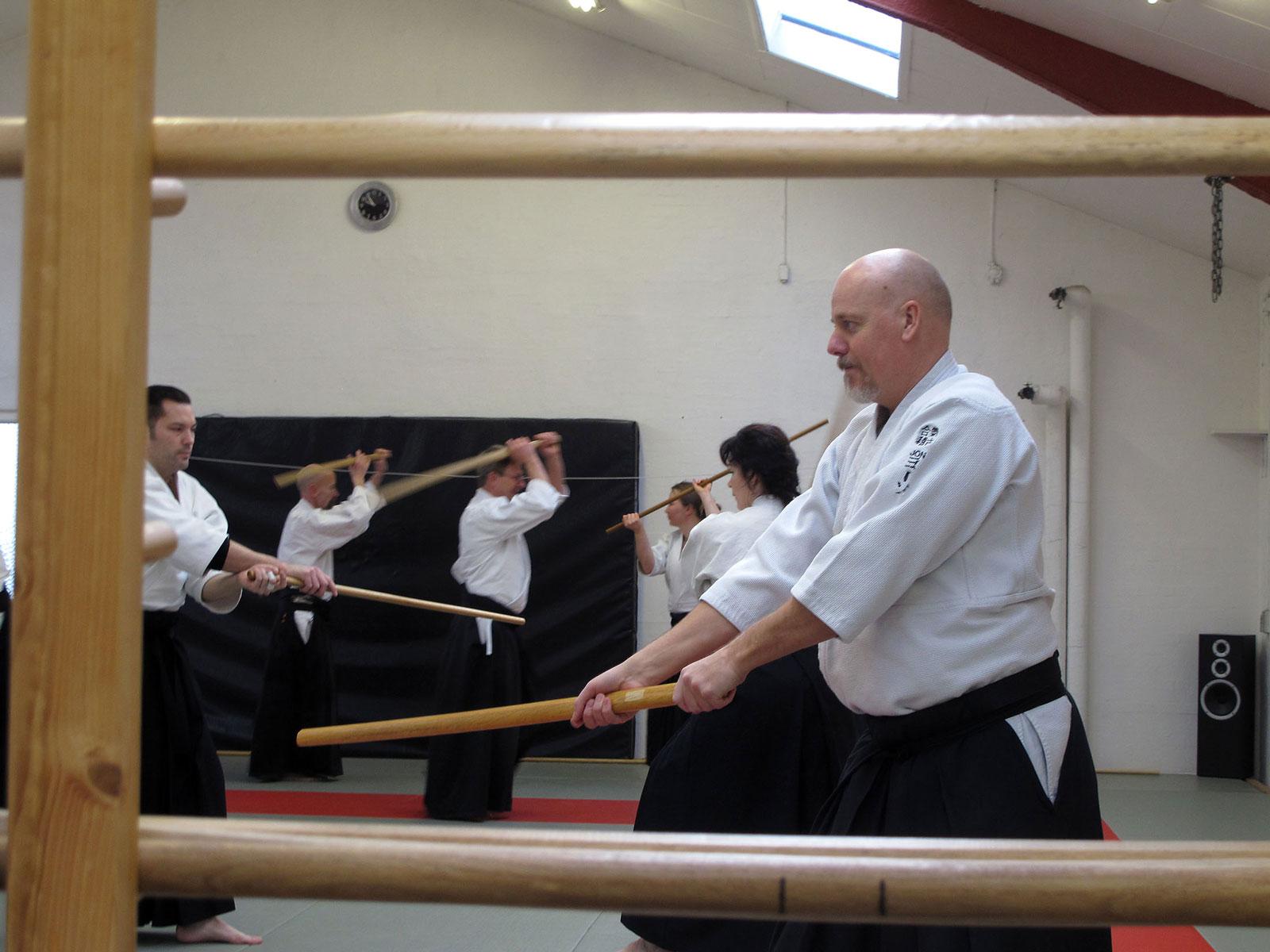 Aalborg-Aikido-seminar-2014-37