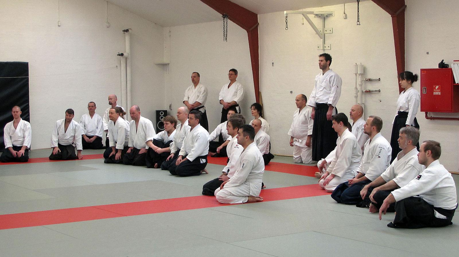 Aalborg-Aikido-seminar-2014-41