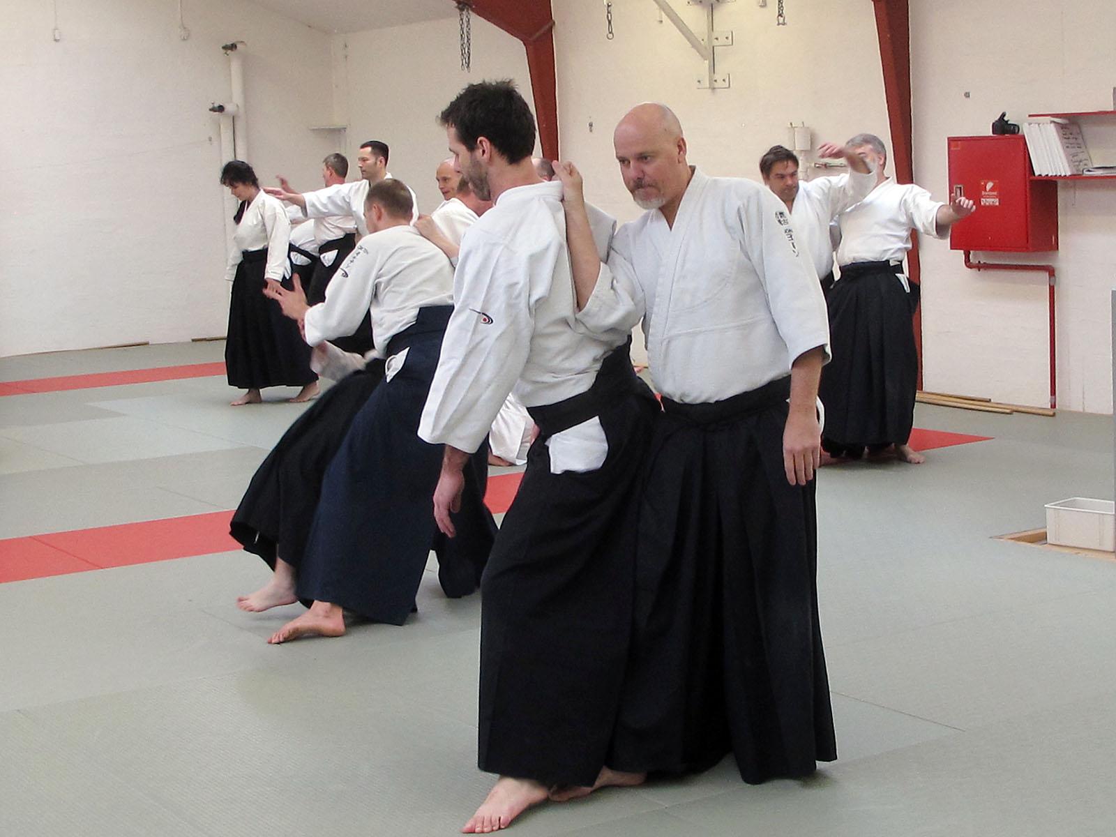 Aalborg-Aikido-seminar-2014-43
