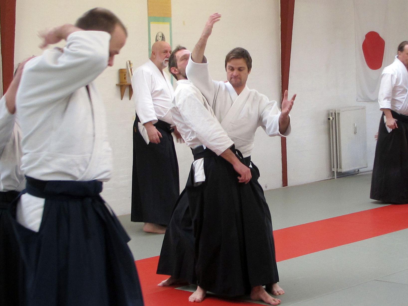 Aalborg-Aikido-seminar-2014-44