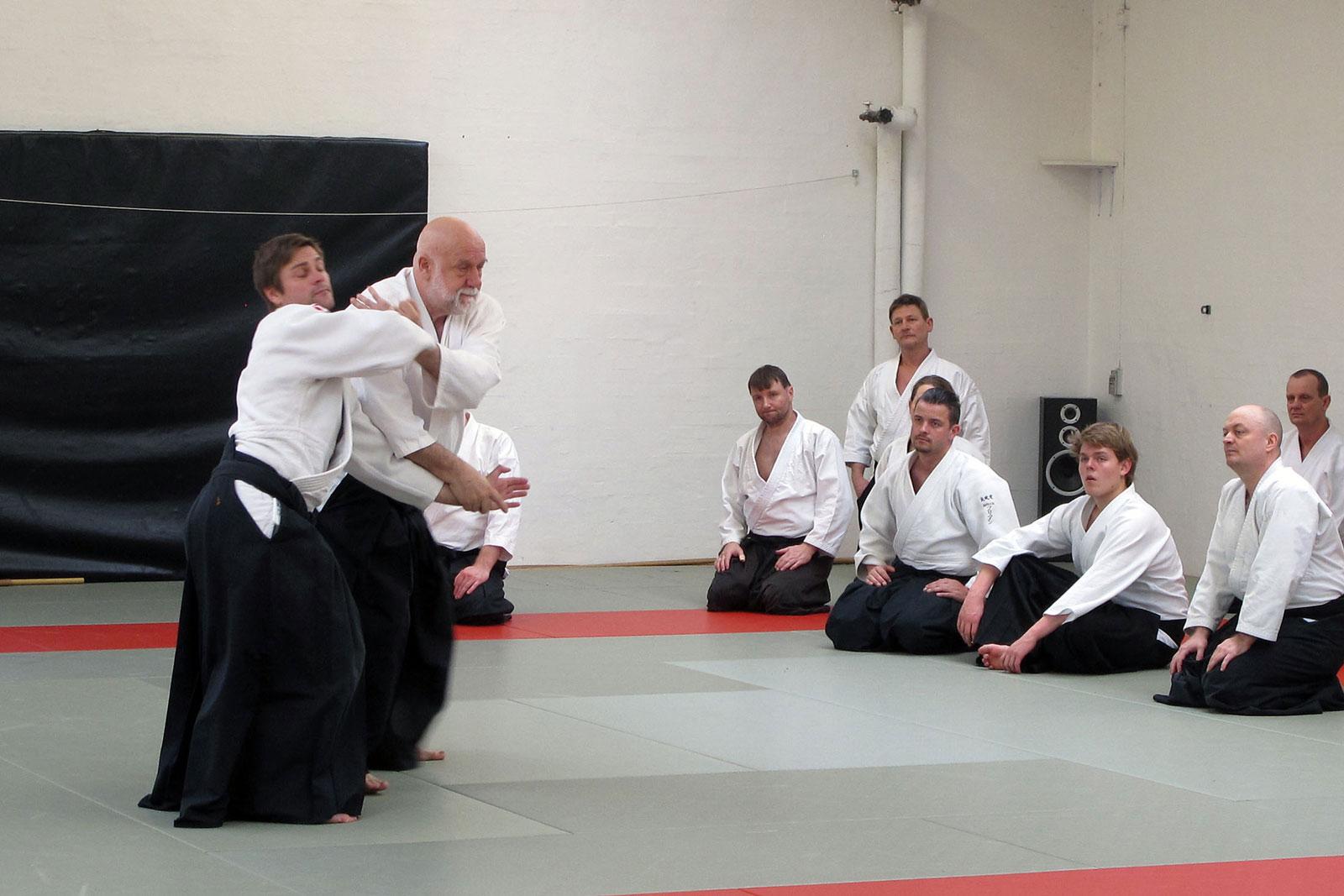 Aalborg-Aikido-seminar-2014-49