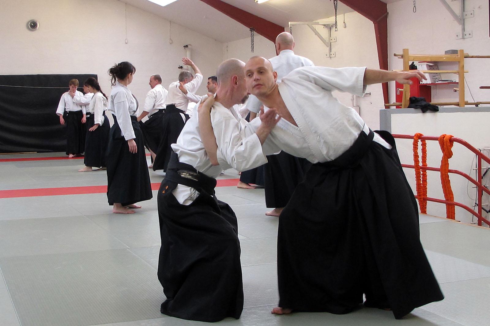 Aalborg-Aikido-seminar-2014-59