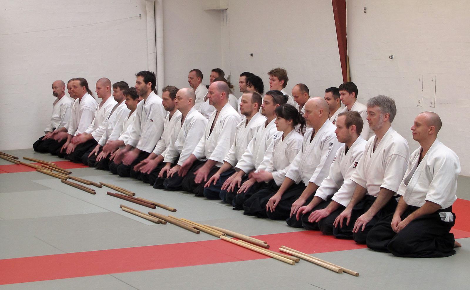Aalborg-Aikido-seminar-2014-62